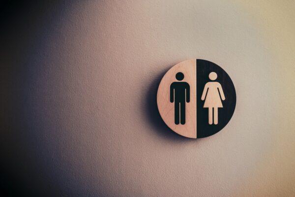 Toaleta do wynajęcia